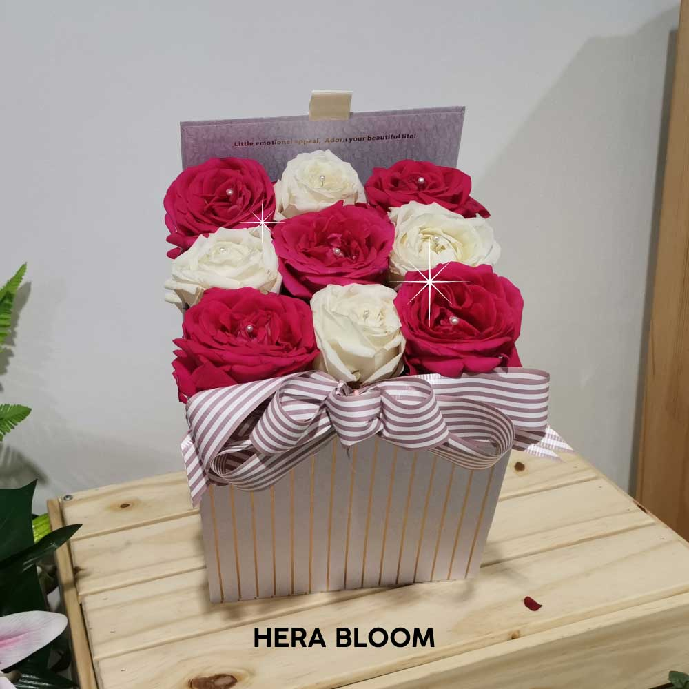 Hot Pink and White Rose in Box - Hera Bloom