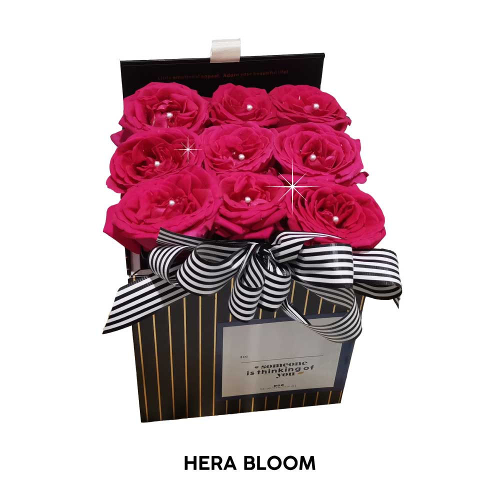 Hot Pink Rose in Box - Hera Bloom