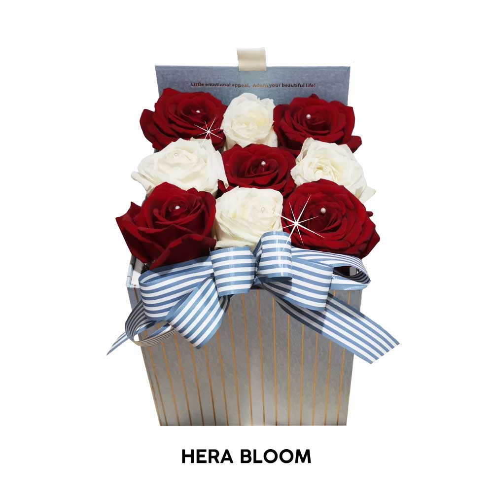 Red and White Rose in Box - Hera Bloom