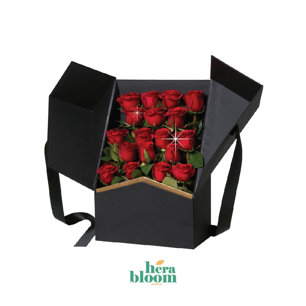 Red Rose in Box - Hera Bloom