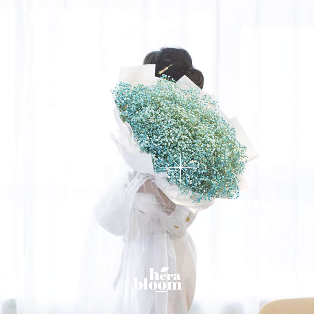 Blue Giant Baby Breath - Hera Bloom