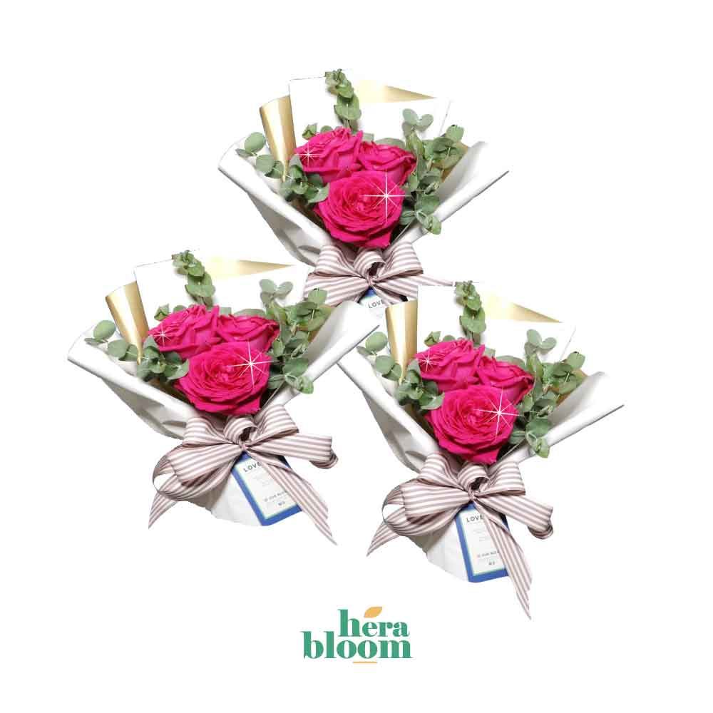 Hot Pink Rose Mini Trio - Hera Bloom
