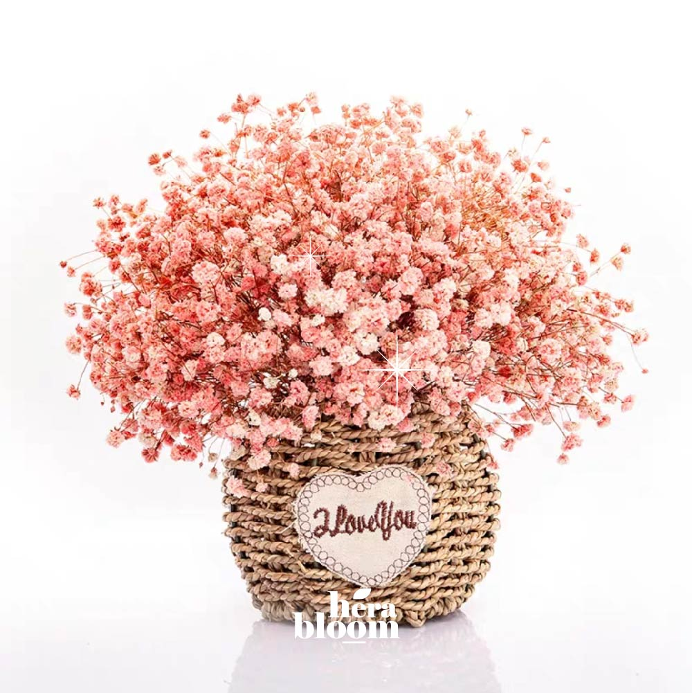Dried Peach Baby Breath in Basket - Hera Bloom
