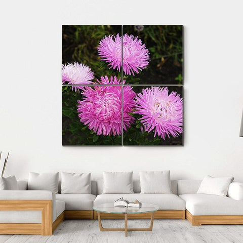 4-piece Square Asters Flowers Canvas Wall Art: