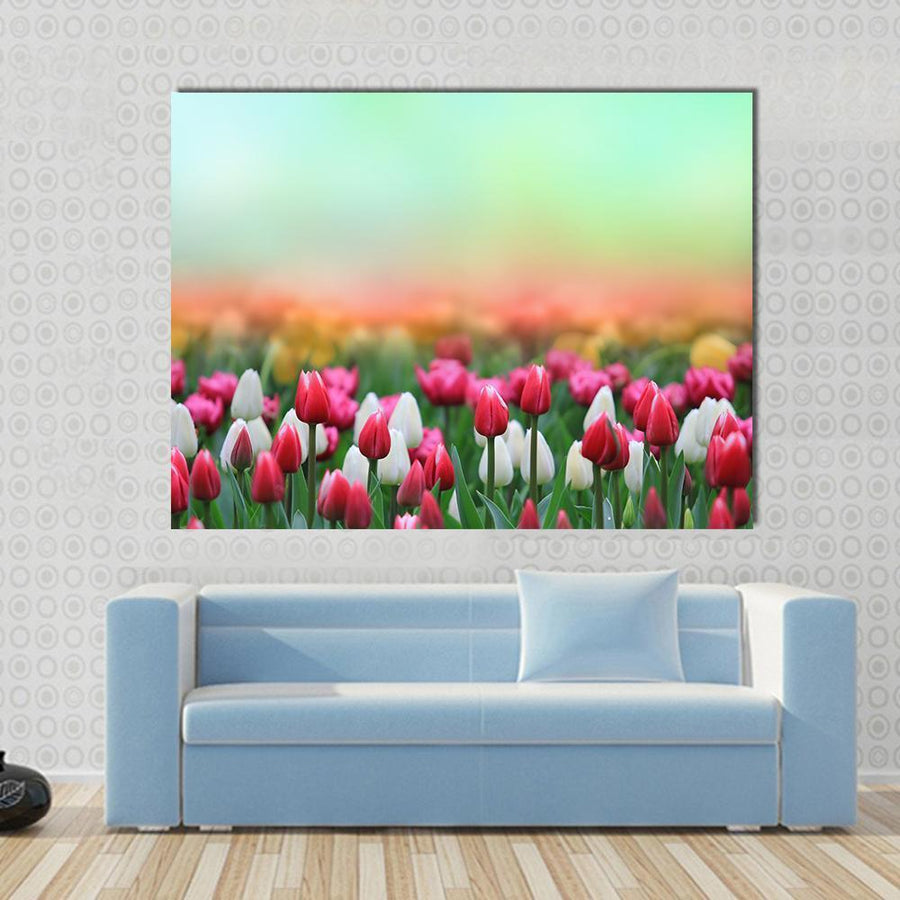 Beautiful Tulips Field Multi Panel Canvas Wall Art 5 Horizontal / Small / Gallery Wrap Tiaracle