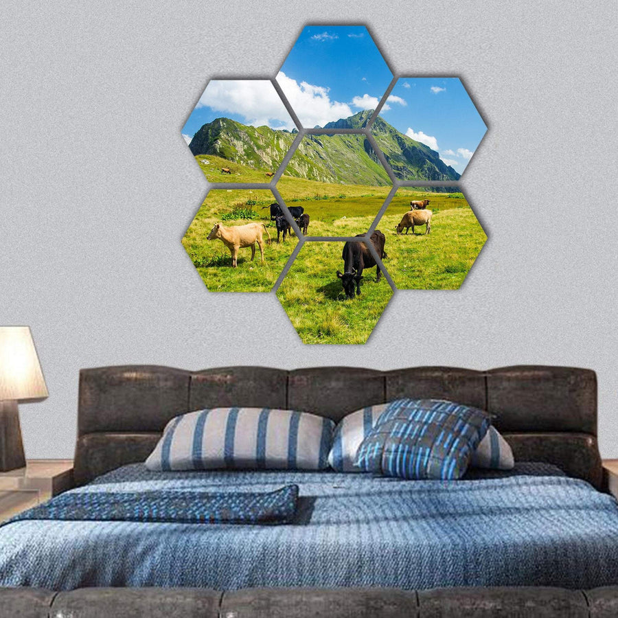Animals In Highland Alpine Meadow Hexagonal Canvas Wall Art