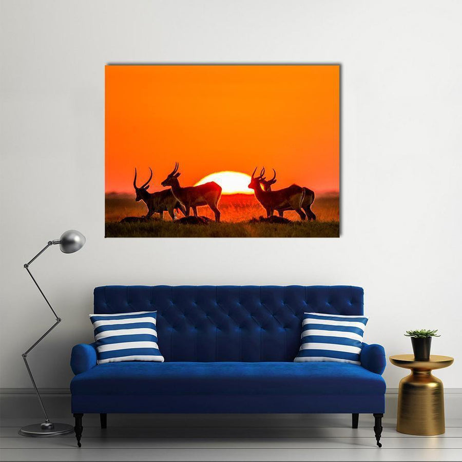 Antelope Standing Against Sunrise Canvas Wall Art-4 Horizontal-Small-Gallery Wrap-Tiaracle