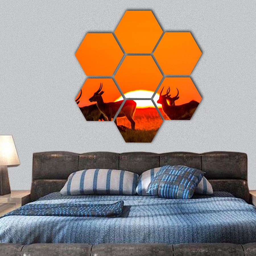 Antelope Standing Against Sunrise Hexagonal Canvas Wall Art-1 Hexa-Small-Gallery Wrap-Tiaracle