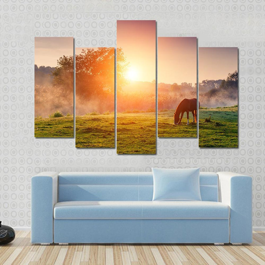 Arabian horse Grazing On Pasture At Sunset Canvas Panel Painting Tiaracle