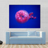 Australian Spotted Jellyfish Multi Panel Canvas Wall Art 1 Piece / Small / Gallery Wrap Tiaracle