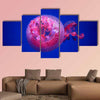 Australian Spotted Jellyfish Multi Panel Canvas Wall Art 5 Star / Small / Gallery Wrap Tiaracle