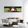 Baseball Equipment Panoramic Canvas Wall Art 1 Piece / Small Tiaracle