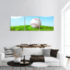 Base Ball In Green Grass Panoramic Canvas Wall Art Tiaracle