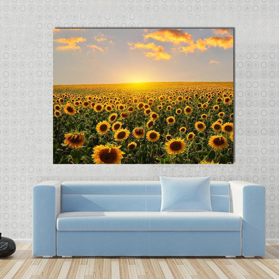 Field Of Blooming Sunflowers On A Background Sunset Canvas Panel Painting Tiaracle
