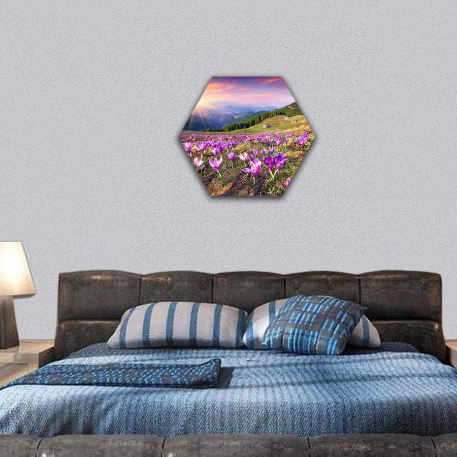 Blossom Of Crocuses At Spring In The Mountains Hexagonal Canvas Wall Art 7 Hexa / Small / Gallery Wrap Tiaracle