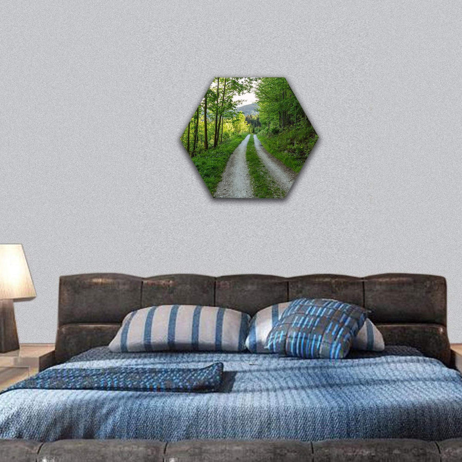 Cycling Road In Nature Forest Hexagonal Canvas Wall Art 7 Hexa / Small / Gallery Wrap Tiaracle