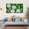Fluffy Dandelion Flowers Canvas Wall Art-5 Horizontal-Small-Gallery Wrap-Tiaracle