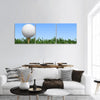 Golf Ball In Grass Panoramic Canvas Wall Art 3 Piece / Small Tiaracle