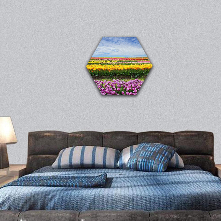 Horizontal Row Of Tulips On The Field In The Spring Time Hexagonal Canvas Wall Art 7 Hexa / Small / Gallery Wrap Tiaracle