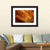 Hot Fire Peacock Feather Canvas Wall Art