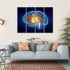 Human Brain Canvas Wall Art-4 Horizontal-Small-Gallery Wrap-Tiaracle
