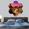 Kansas City Plaza Christmas Lights Hexagonal Canvas Wall Art 7 Hexa / Small / Gallery Wrap Tiaracle