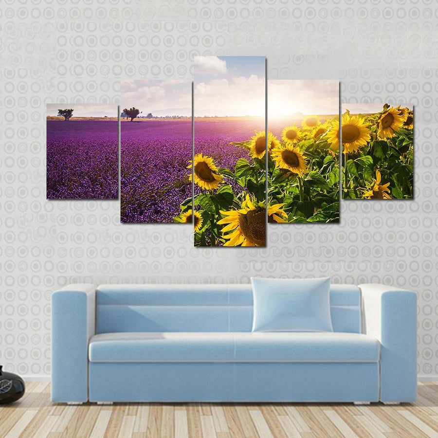 Lavender And Sunflowers Fields , Provence Canvas Panel Painting Tiaracle