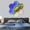Morocco Terrain On Map Hexagonal Canvas Wall Art 7 Hexa / Small / Gallery Wrap Tiaracle