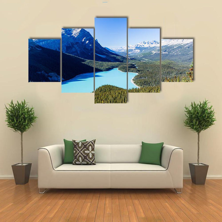 Mountain And Peyto Lake Canvas Panel Painting Tiaracle