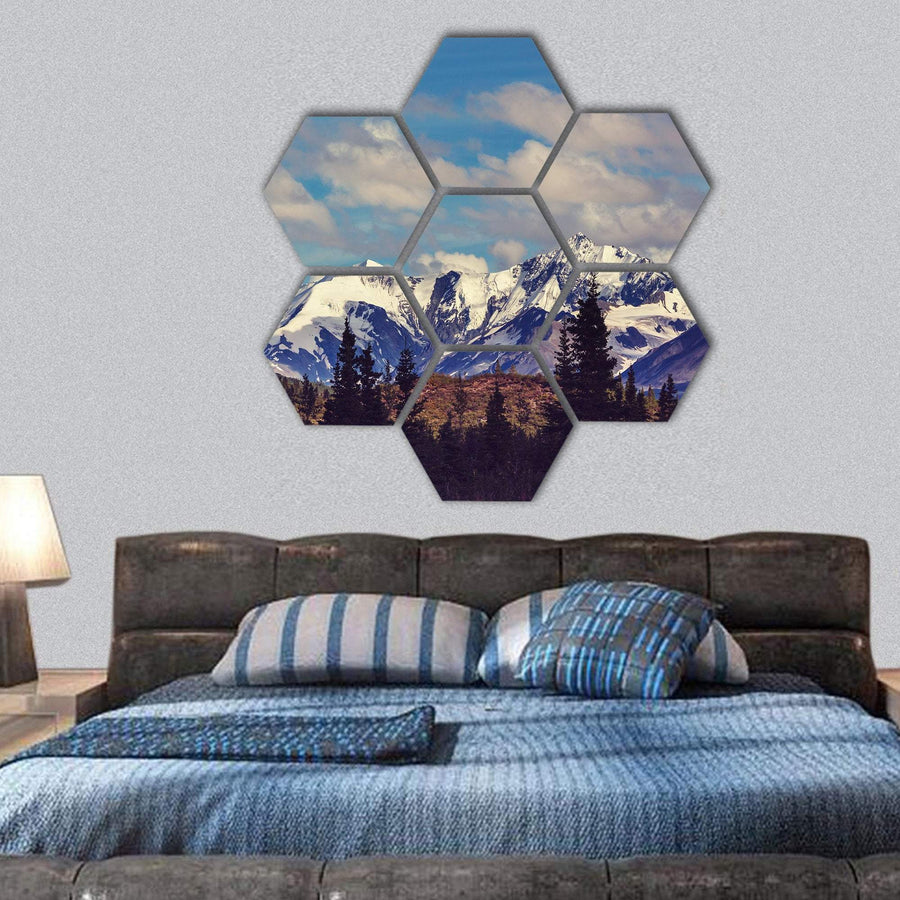 Mountains In Alaska United States Hexagonal Canvas Wall Art 1 Hexa / Small / Gallery Wrap Tiaracle