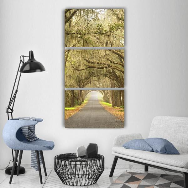 Old Oak Trees With Spanish Moss On A Scenic Road Vertical Canvas Wall Art 1 Vertical / Small / Gallery Wrap Tiaracle