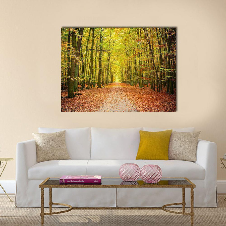 Pathway In The Autumn Forest Multi Panel Canvas Wall Art 5 Pieces(A) / Medium / Canvas Tiaracle
