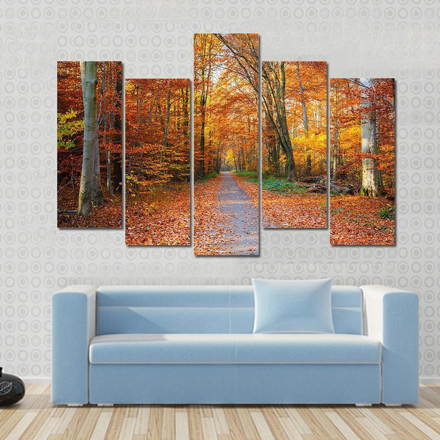 Pathway Through The Autumn Forest Multi Panel Canvas Wall Art 3 Pieces / Small / Gallery Wrap Tiaracle