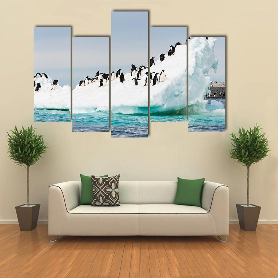 Penguins Colony On Iceberg Antarctica Multi Panel Canvas Wall Art 5 Star / Small / Gallery Wrap Tiaracle
