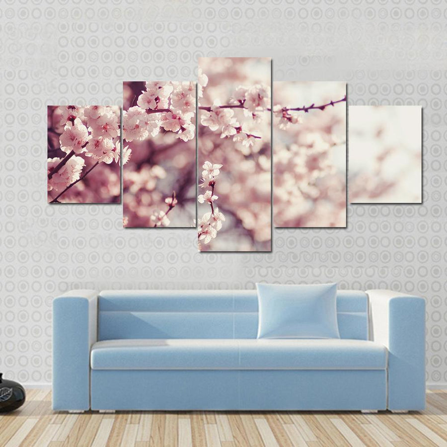 Spring Cherry Blossoms, Pink Flowers Canvas Panel Painting Tiaracle