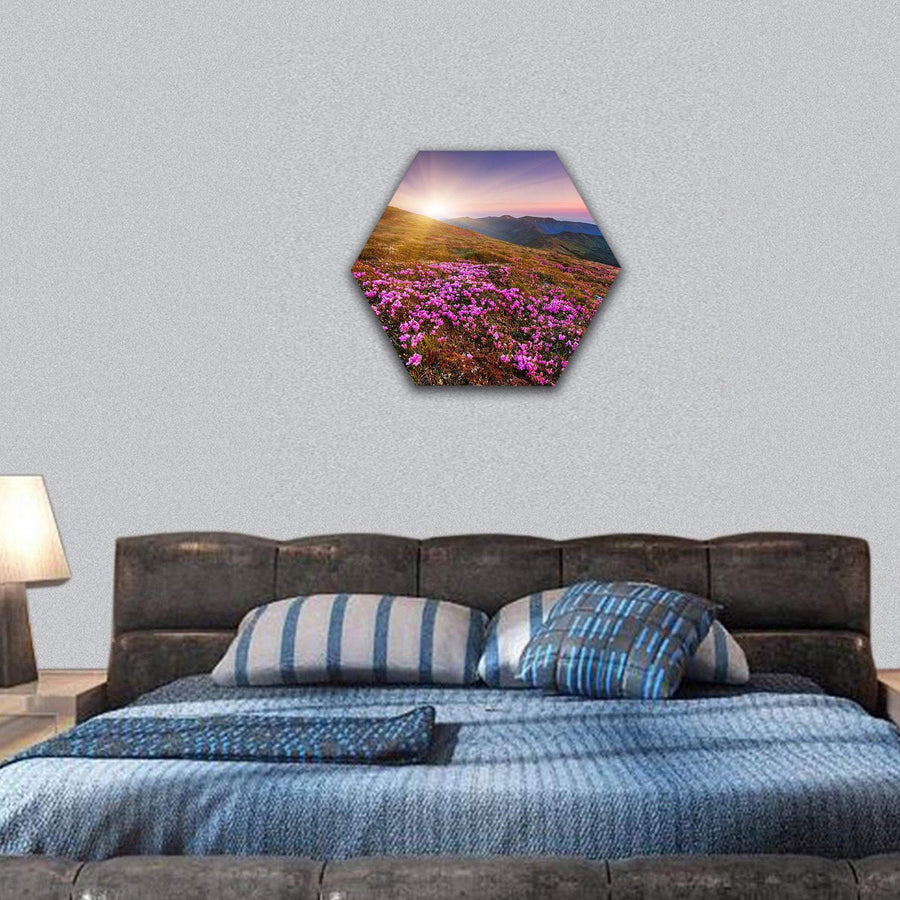 Pink Rhododendron Flowers On Carpathian Mountain Hexagonal Canvas Wall Art 7 Hexa / Small / Gallery Wrap Tiaracle
