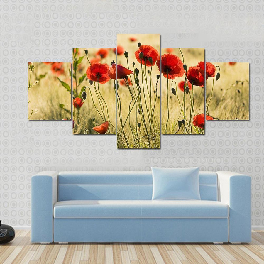 Poppy Flower Field Canvas Panel Painting Tiaracle