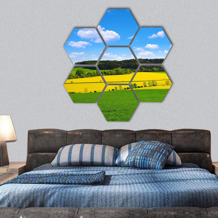 Rapeseed And Green Wheat Field Hexagonal Canvas Wall Art 1 Hexa / Small / Gallery Wrap Tiaracle