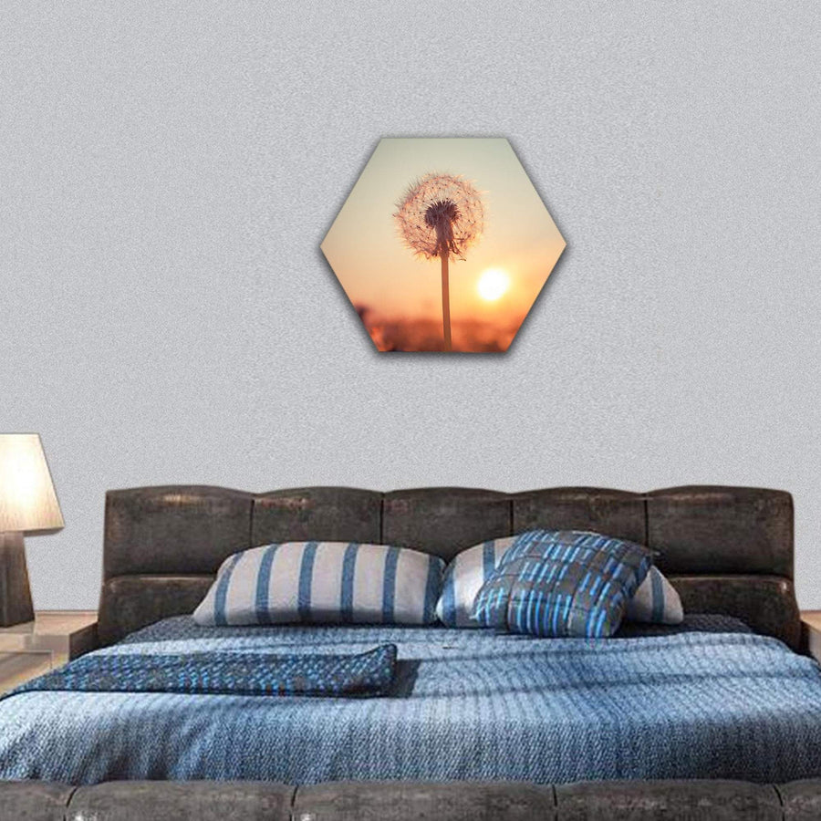 Real Field And Dandelion At Summer Sunset Hexagonal Canvas Wall Art 7 Hexa / Small / Gallery Wrap Tiaracle