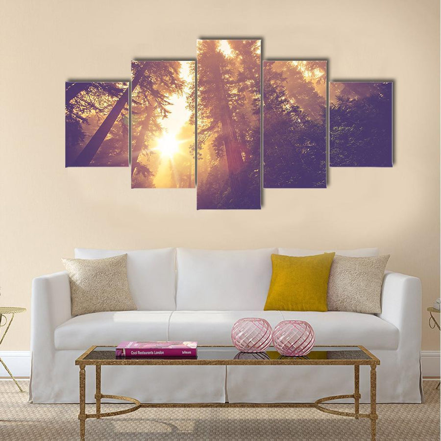 Redwood Forest In Warm Vintage Multi Panel Canvas Wall Art 1 Piece / Small / Gallery Wrap Tiaracle