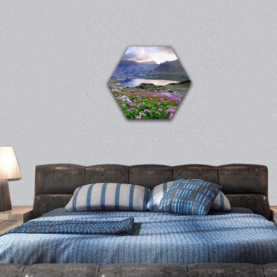 Retezat National Park With Lake On Mountain And Flowers, Romania Hexagonal Canvas Wall Art 7 Hexa / Small / Gallery Wrap Tiaracle