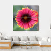 Ripe Red Flower Canvas Wall Art-4 Square-Small-Gallery Wrap-Tiaracle