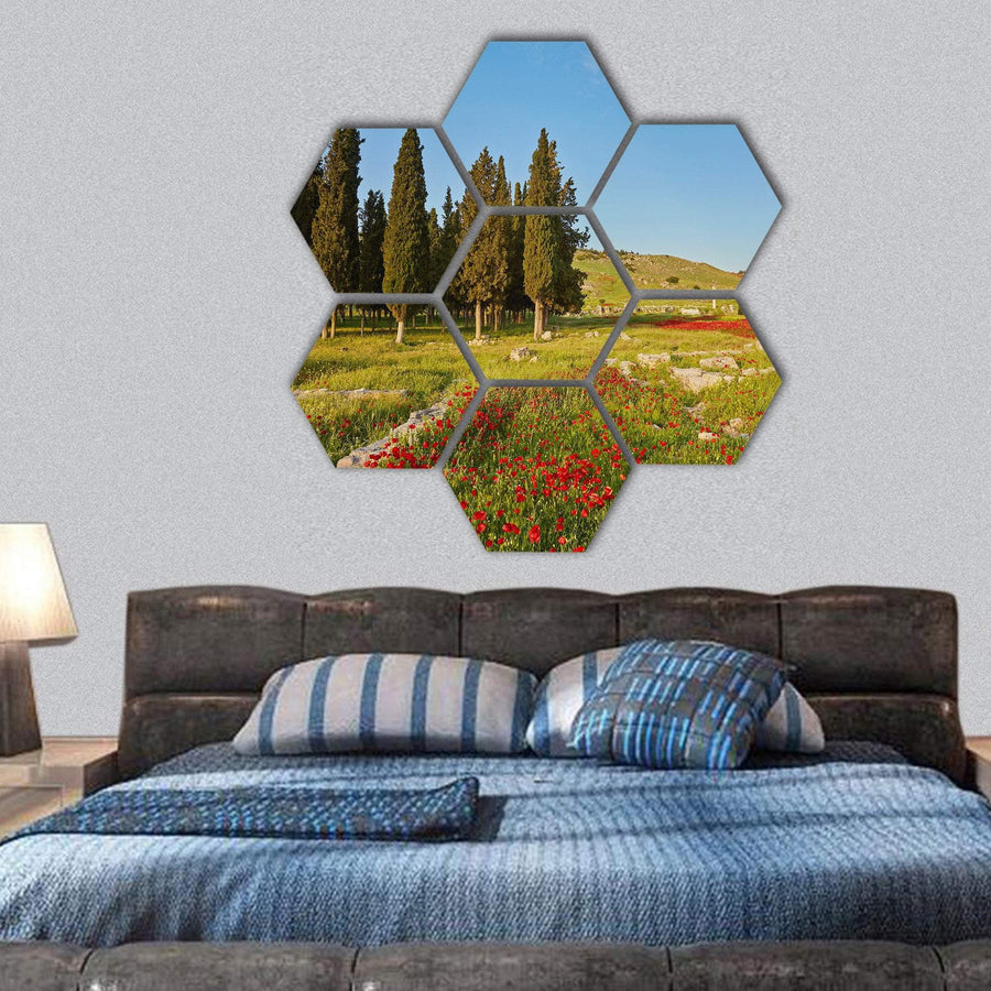 Ruins Of Ancient City In Turkey Hexagonal Canvas Wall Art 1 Hexa / Small / Gallery Wrap Tiaracle