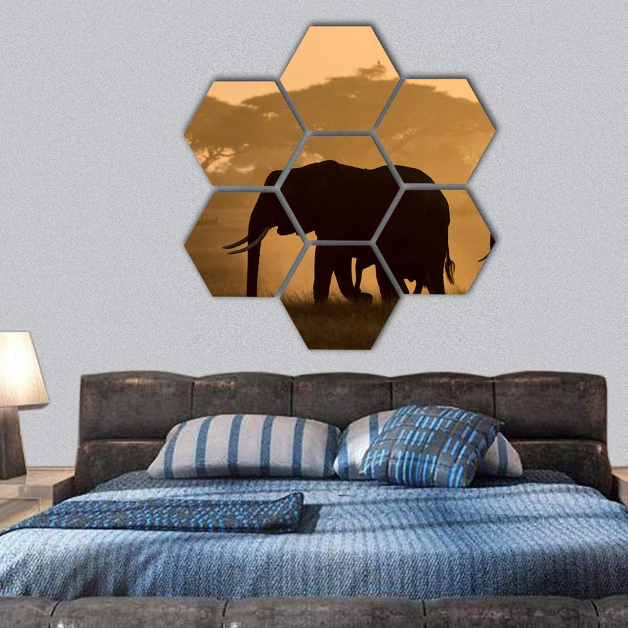 Silhouette Of Elephant Hexagonal Canvas Wall Art 1 Hexa / Small / Gallery Wrap Tiaracle