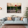 Spring Flowers In Holland Canvas Wall Art-4 Horizontal-Small-Gallery Wrap-Tiaracle