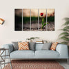 Spring Flowers In Holland Canvas Wall Art-5 Horizontal-Small-Gallery Wrap-Tiaracle