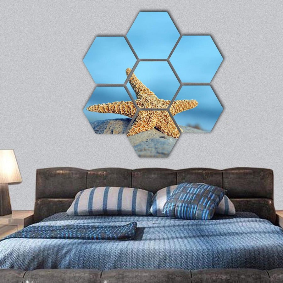 Starfish On Sandy Beach Hexagonal Canvas Wall Art 1 Hexa / Small / Gallery Wrap Tiaracle