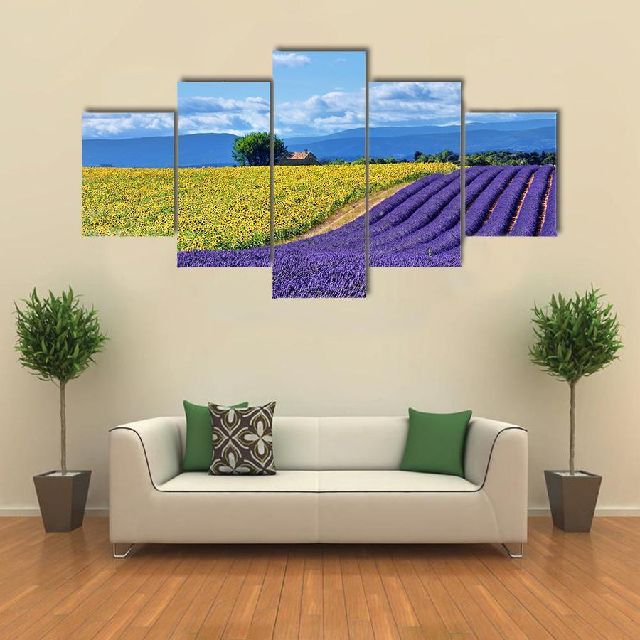 Stunning Rural Landscape With Lavender Field Multi Panel Canvas Wall Art 5 Pieces(A) / Medium / Canvas Tiaracle