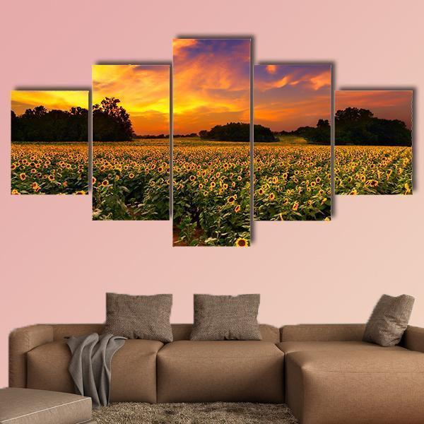 Sun Flower Field In Kansas With Sunset Multi Panel Canvas Wall Art 1 Piece / Medium / Canvas Tiaracle
