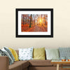 Sun In Autumn Forest Canvas Wall Art